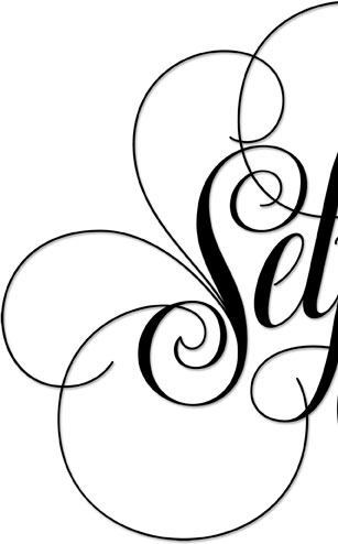Selfie Luxuriant lettering for Zazzle and Redbubble | 26 Character | 26_Characters | hoffmann Angelic Design | lettering | calligraphy | spensarian | flourish | flourished | black | white | lusury | luxurious | t-shirt | graphic Tee | iphone ipad | 7 | Calligraphy